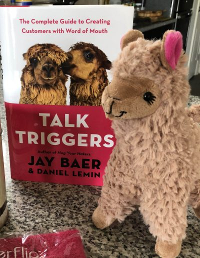 Talk Triggers J Carcamo Associates Book of the Month